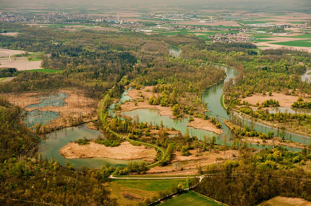 Der bayerische Amazons mit der Stadt Plattling im Hintergrund. © Christian Schreiner