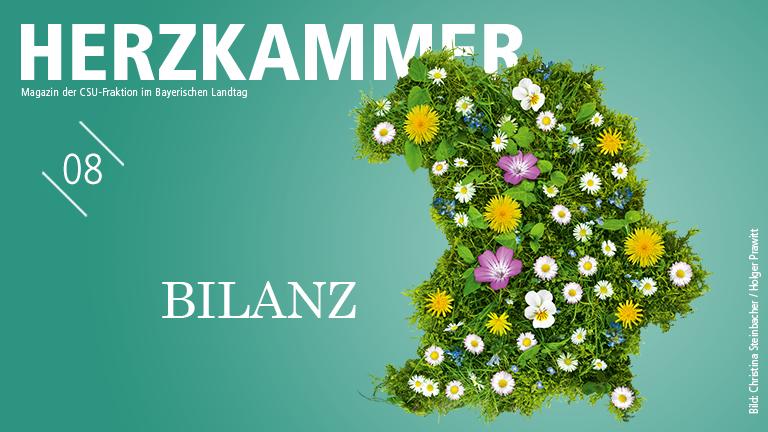 Herzkammer Deggendorf - Ausgabe 8